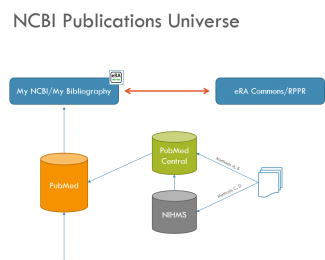 NCBI Publications Universe